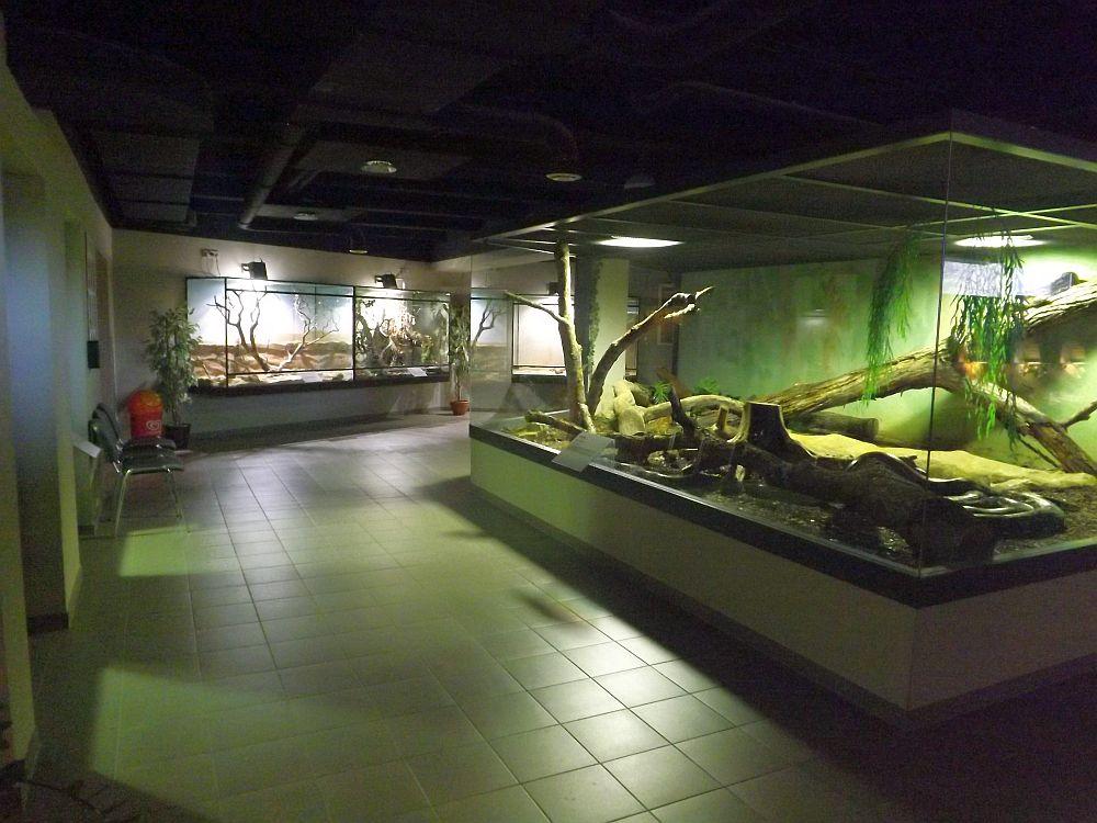 Exotarium Oberhof