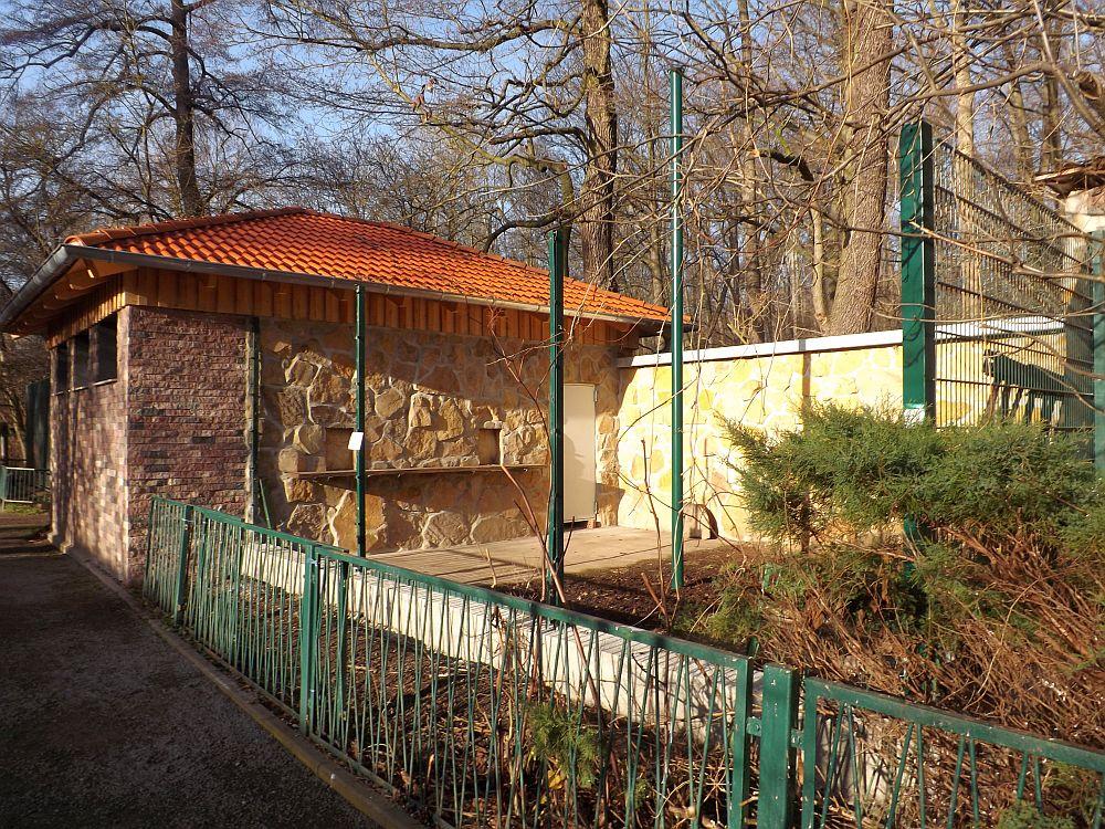 Baustelle Außenanlage Rhesusaffen (Tierpark Gotha)