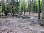 Wildschweinanlage (Tierpark Kunsterspring)