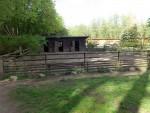 Wollschweinanlage (Tierpark Kunsterspring)