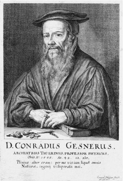 Conrad Gesner (1516–1565), Stich von Conrad Meyer, 1662