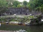 Eisbärenanlage (Tierpark Berlin)