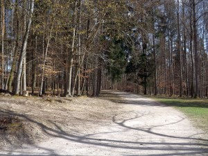 Wild- und Freizeitpark Bodanrück