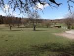 Damhirschanlage (Wild- und Freizeitpark Bodanrück)