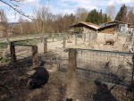 Plättli Zoo