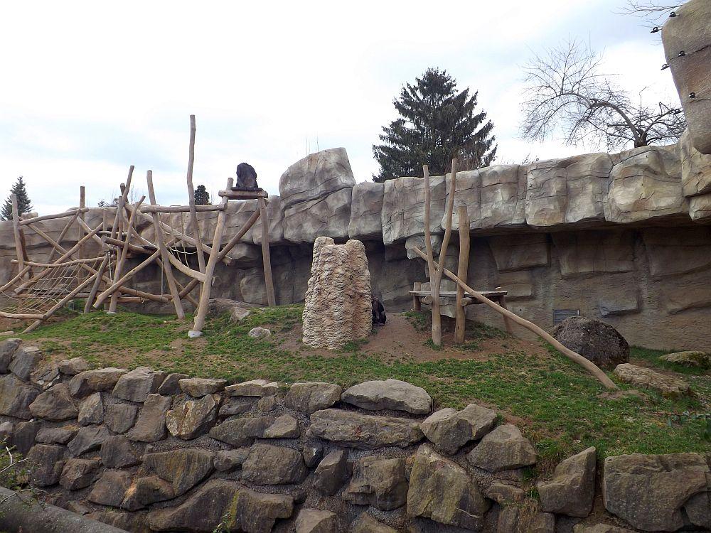 Außenanlage der Schimpansen (Abenteuerland Walter Zoo)