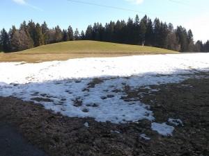 Schnee am Pfänder