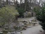 Außenanlage (Voliere St. Gallen)