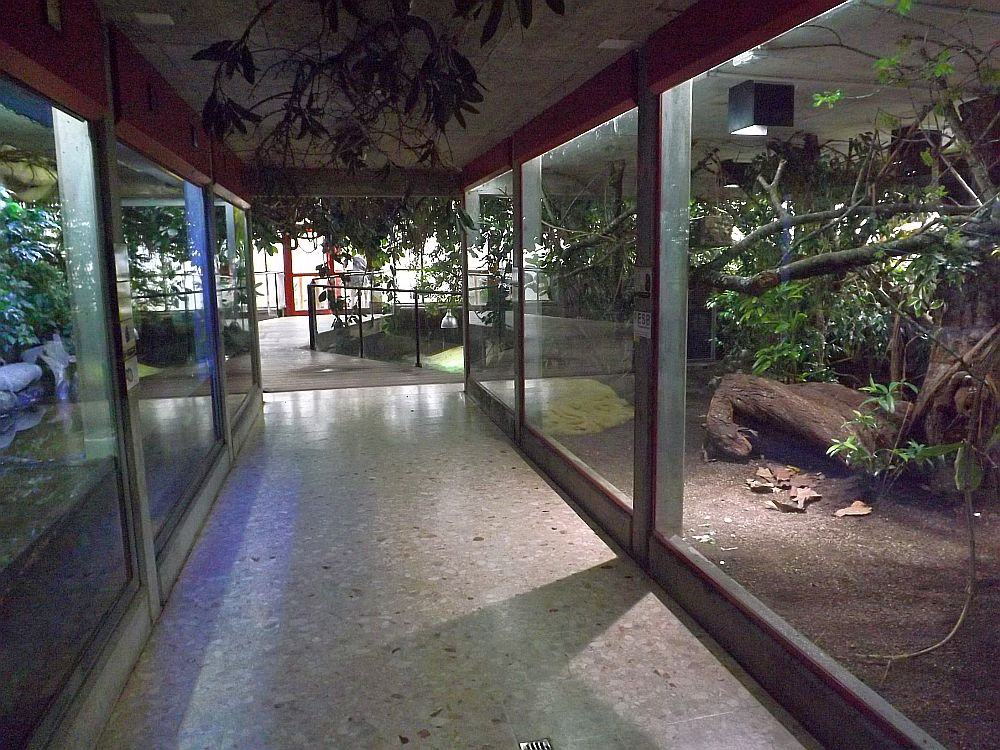 Tropenhaus (Abenteuerland Walter Zoo)