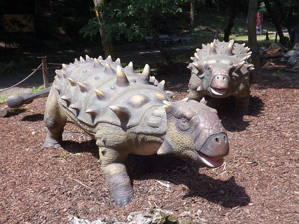 Ankylosaurus (Zoo Bratislava)