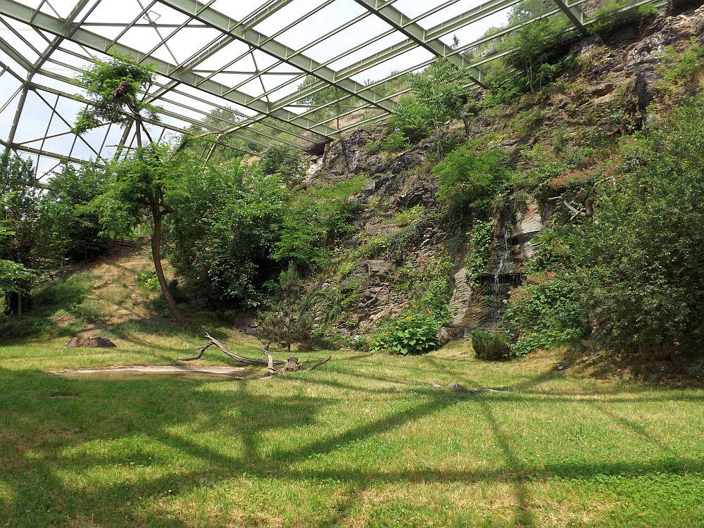Geiervoliere (Zoo Prag)