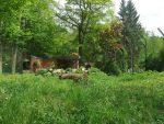 Löwenanlage (Zoo Eberswalde)