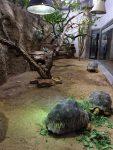 Madagaskarterrarium (Aquarium Berlin)