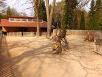 Anlage für Zwergponys und Dahomeyrinder (Zoo Augsburg)