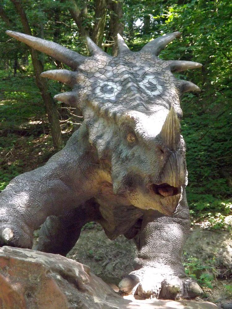 Styracosaurus (Zoo Bratislava)