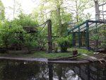 Totenkopfaffenanlage (Zoo Eberswalde)
