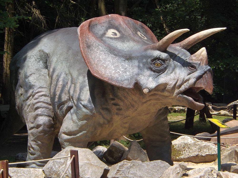 Triceratops (Zoo Bratislava)