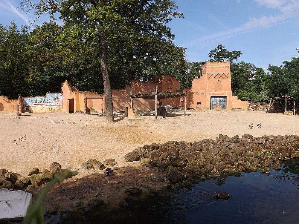 Anlage für Wildesel und Mendesantilopen (Erlebniszoo Hannover)