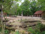 Wisentanlage (Zoo Eberswalde)