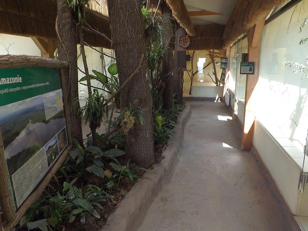 Amazonia (Zoo Plzen)