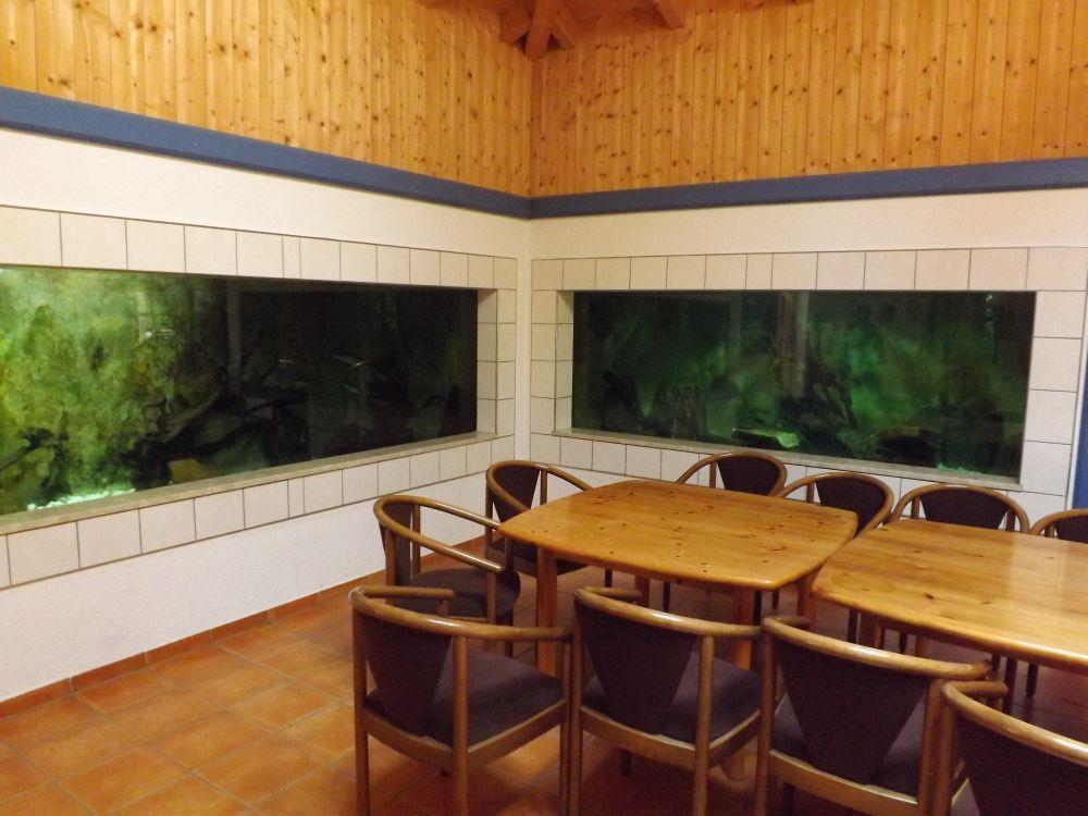 Haus am Elchsee (Bayerwald Tierpark Lohberg)
