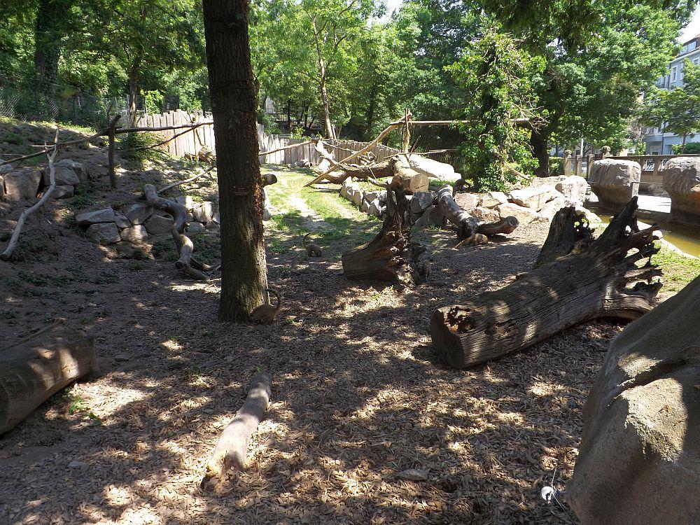 Nasenbärenanlage (Zoo Karlsruhe)