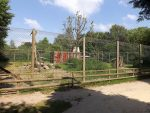 Berberaffenanlage (Tiergarten Ludwigslust)