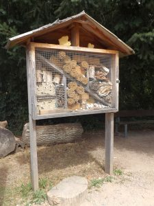 Die Pokemonarena Bienenhotel (Tier-Natur-Erlebnispark Mundenhof)