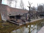 Bartaffenanlage (Zoo Leipzig)