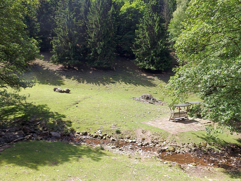 Damhirsch- und Mufflonanlage (Tierpark Suhl)