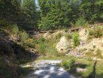 Geiervoliere (Wildpark Bad Mergentheim)