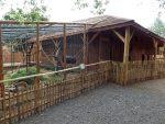 Rhesusaffenanlage und Minischweinanlage (Erlebnistierpark Memleben)