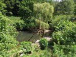 Teich (Tierpark Suhl)