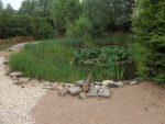 Teich (Erlebnistierpark Memleben)
