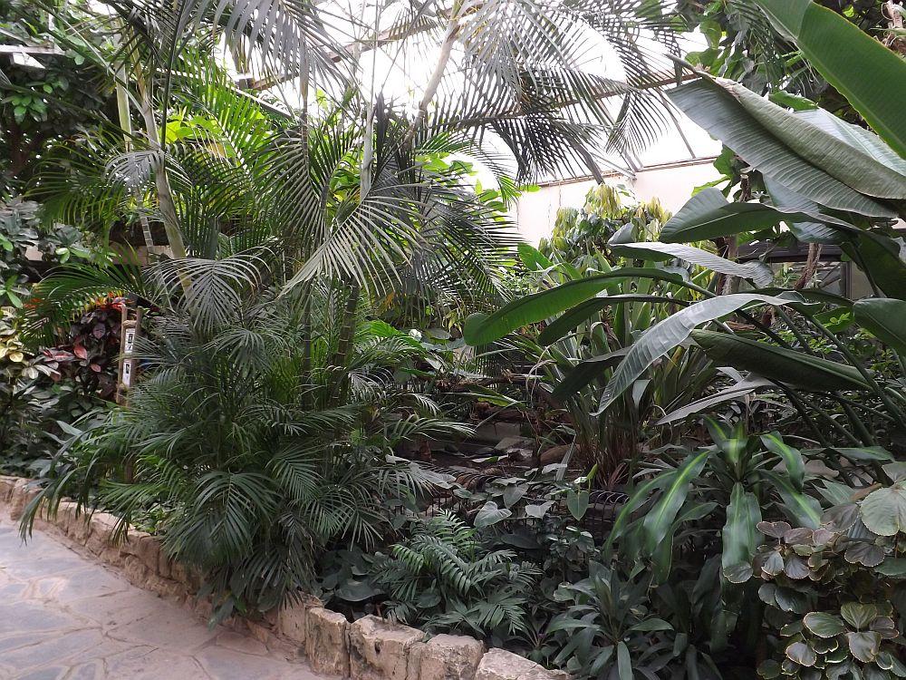 Terrarium (Zoo Leipzig)