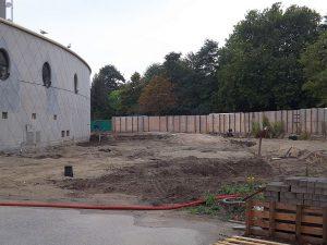 Baustelle: Dscheladaanlage ( Diergaarde Blijdorp)