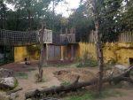 Braunbärenanlage (Zoo Amersfoort)