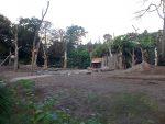 Elefantenanlage (Zoo Amersfoort)