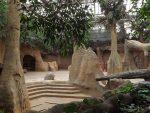 Innenanlage der Elefanten( Diergaarde Blijdorp)