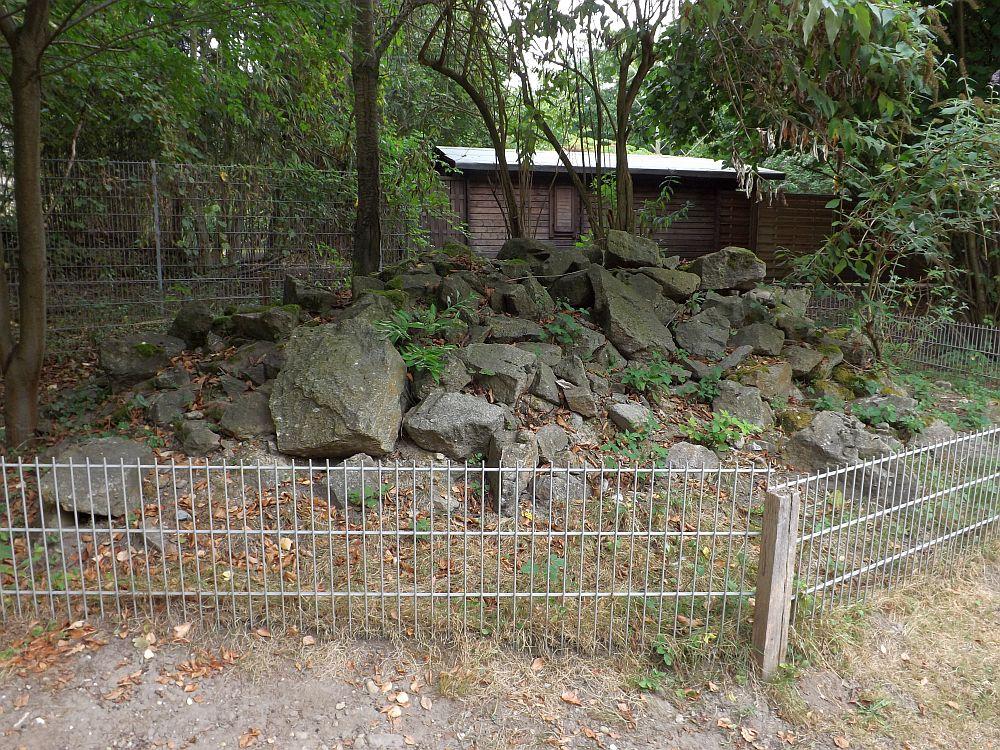 Lebensraum Steinhaufen (Wildpark Reuschenberg)