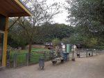 Streichelzoo (Wildpark Reuschenberg)