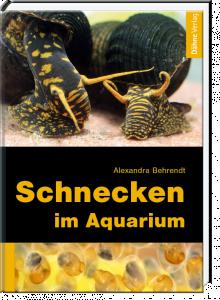 Schnecken im aquarium der beutelwolf blog for Schnecken im aquarium