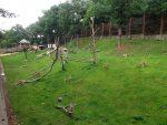Anlage für Arkale und Berberaffen (Zoopark Chomutov)