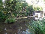 Gibbonanlage (Ouwehands Dierenpark)