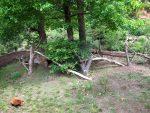 Katzenbärenanlage (Zoo Plzen)