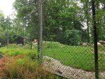 Löwenanlage (Tiergarten Straubing)