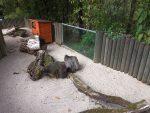 Meerschweinchenanlage (Tiergarten Straubing)