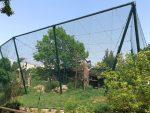 Neuweltgeieranlage (Zoo Plzen)