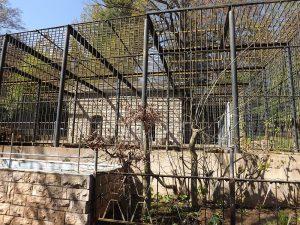 Ehemaliger Braunbärenkäfig (Tierpark Eisenberg)