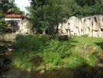 Löwenanlage (Ouwehands Dierenpark)